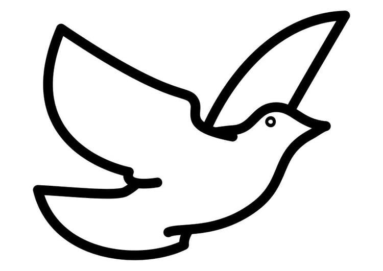 Coloriage un pigeon img 10310 - Coloriage pigeon ...