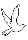 Coloriage un pigeon img 10310 images - Coloriage pigeon ...