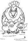 Coloriage une poule avec ses poussins