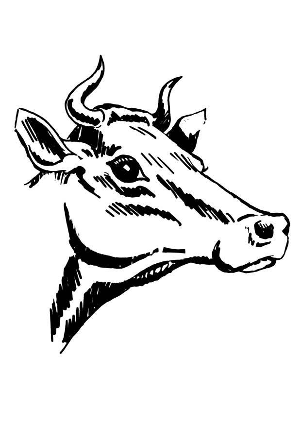 Coloriage vache avec cornes - Coloriages Gratuits à ...