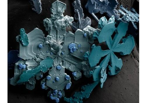 cristaux de neige sous le microscope Cristaux-de-neige-sous-le-microscope-t8084