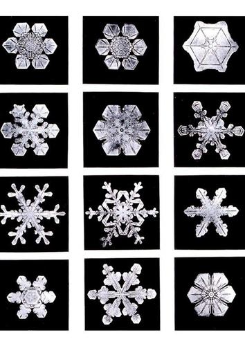 cristaux-de-neige-t7255
