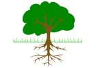 Image Arbre avec racines