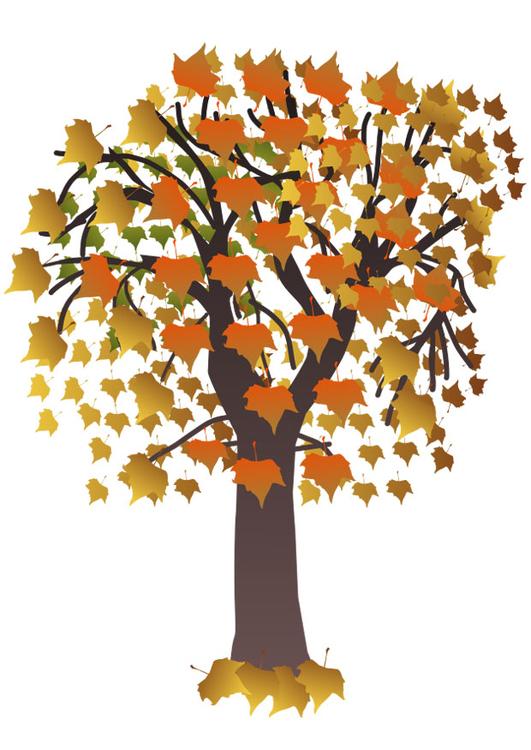 Image arbre en automne dessin 20554 - Arbre d automne a colorier ...