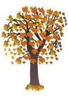 Image arbre en automne