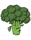 Image brocoli