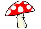 Image champignon