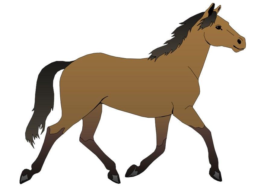 Image cheval dessin 20300 - Image cheval dessin ...