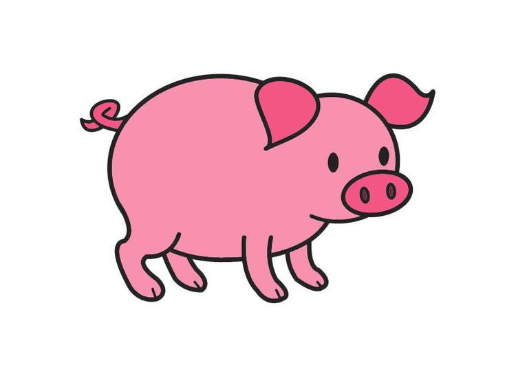 Image Cochon Dessin 21004