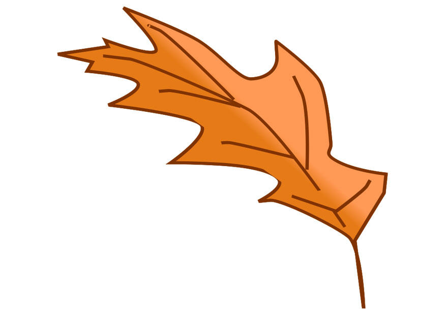 Image feuille d 39 automne dessin 20538 - Feuille automne dessin ...