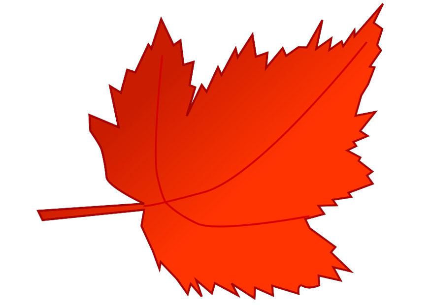 Image feuille d 39 automne dessin 20540 - Dessiner des feuilles d automne ...