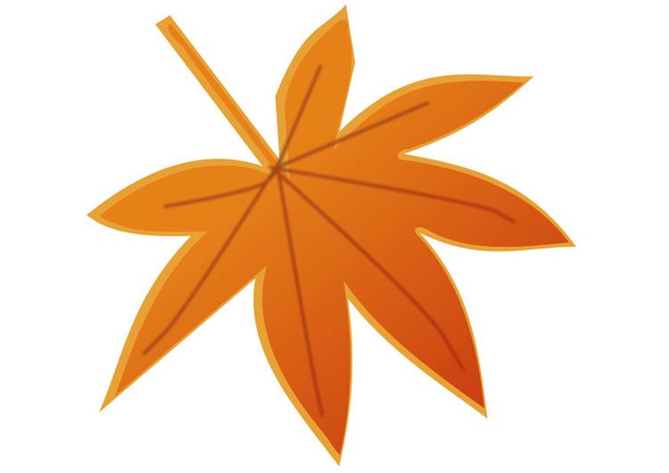 Image feuille d 39 automne dessin 20539 - Image feuille automne ...