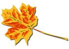 Image feuille d'automne