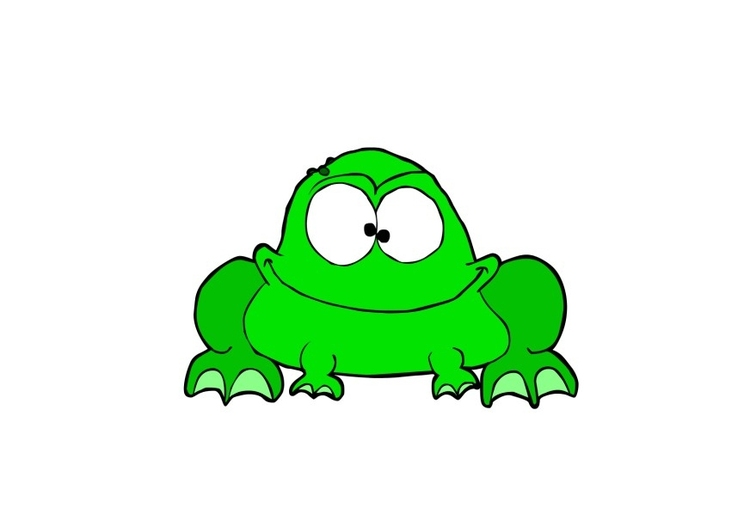 Image grenouille