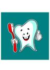 Image hygiène dentaire