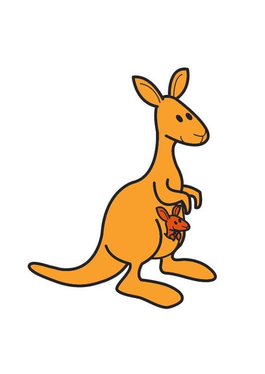 Dessin Kangourou image kangourou - dessin 21001
