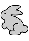 Images lapin