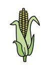 Image maïs