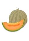 Image melon