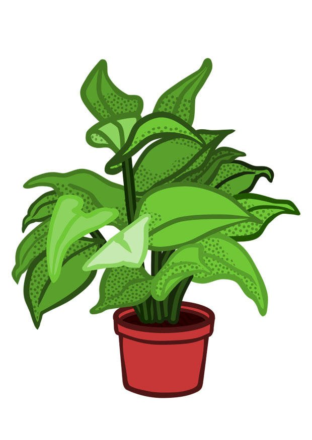 Image plante d 39 int rieur dessin 29844 - Plante depolluante d interieur ...