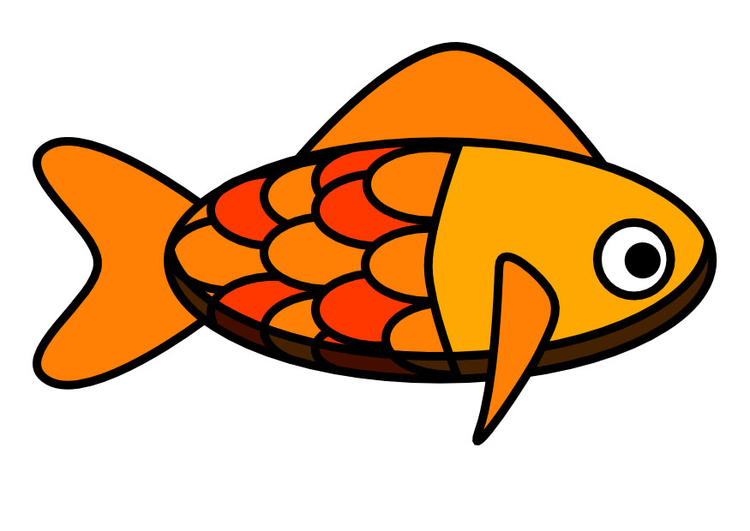 Image poisson dessin 22446 - Poisson image ...