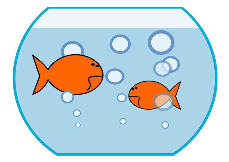 Image poisson rouge dessin 27213 - Dessin de poisson rouge ...