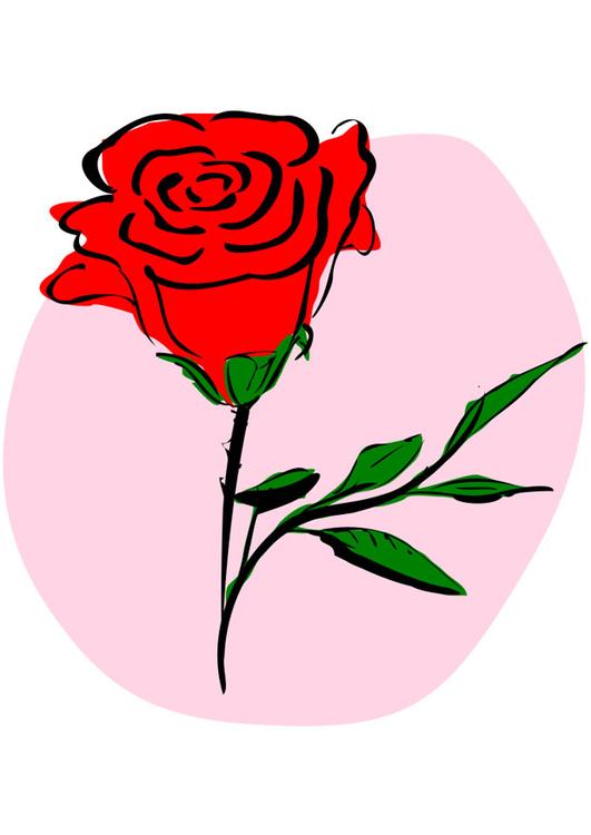 Image rose rouge - Dessin 21262