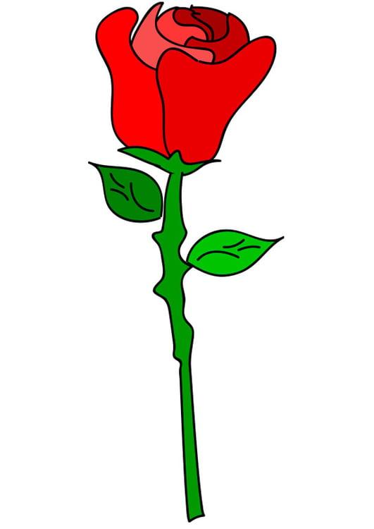 Image Rose Rouge Dessin 21274