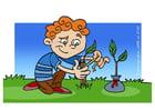 Image soigner un arbre