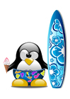 Image surf