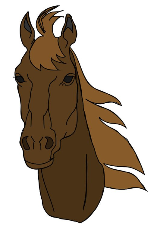Image t te de cheval dessin 20758 - Tete de cheval dessin ...