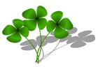 Image trèfle à quatre feuilles