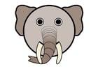 Image un éléphant