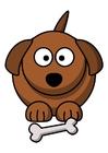 Image z1-le chien
