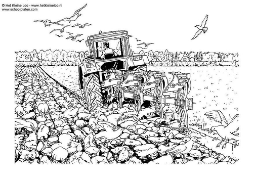 Coloriage Tracteur Agricole