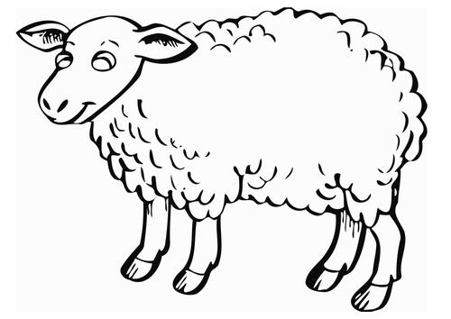 Mouton le petit prince coloriage - Dessin mouton ...