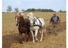 Photo agriculteur labourant un champ