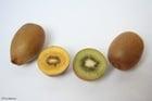 Photo kiwi jaune et kiwi vert
