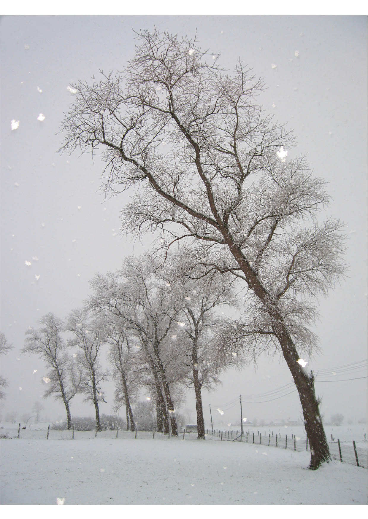 Photo neige paysage enneig img 9128 - Paysage enneige dessin ...
