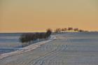 Photo scène hivernale