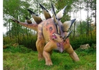 Photo stegosaurus