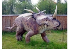 Photo styracosaurus